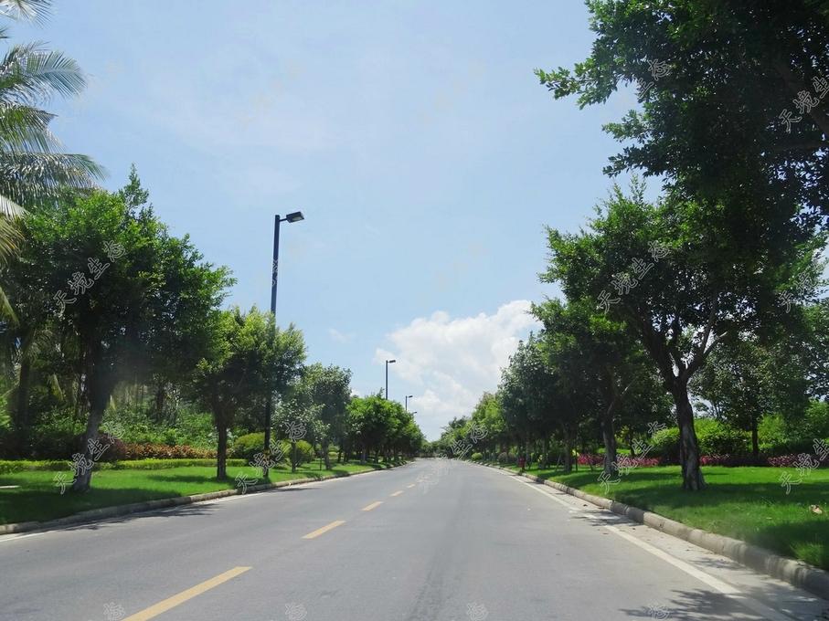 三亚海棠湾市政道路